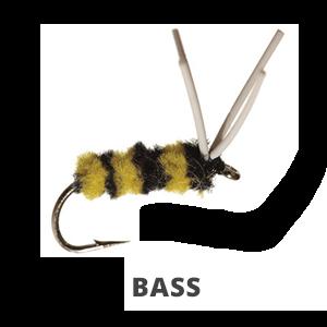 Bass | Pike
