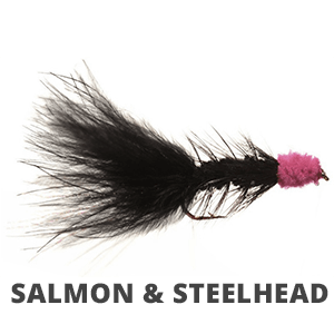 Salmon | Steelhead