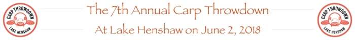 carp-flyfishing-banner