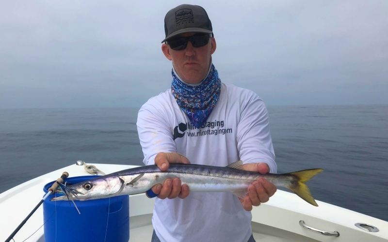 Barracuda-Fly-Fishing-San-Diego-California