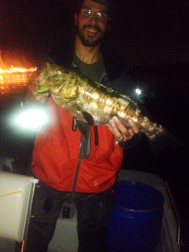 Creatures of the night for Night bass fishing