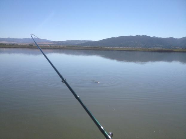 Carp-Fly-Fishing-Hook-Up
