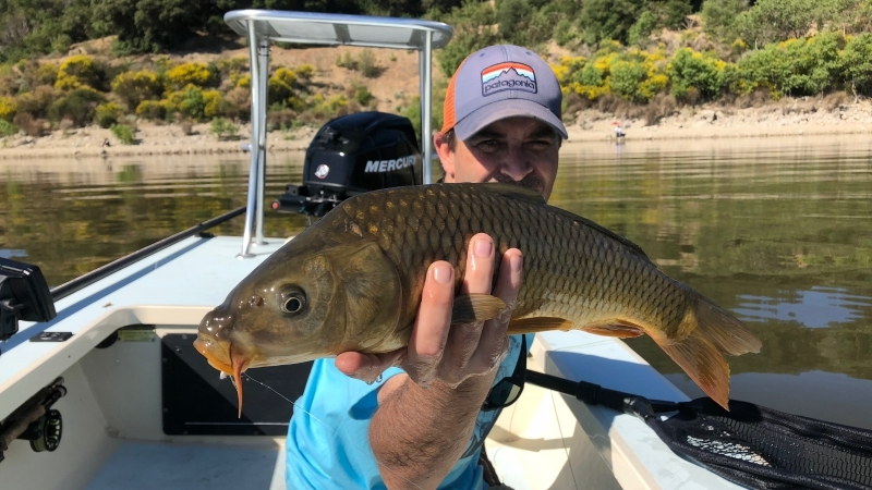 San-Diego-Fly-Fishing-Carp