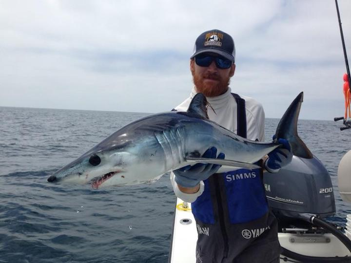 san diego shark fishing charter