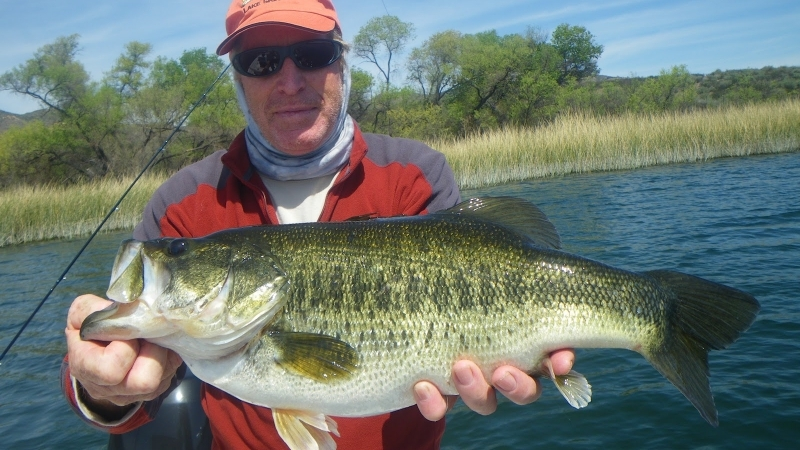 Largemouth-Bass-Fly-Fishing