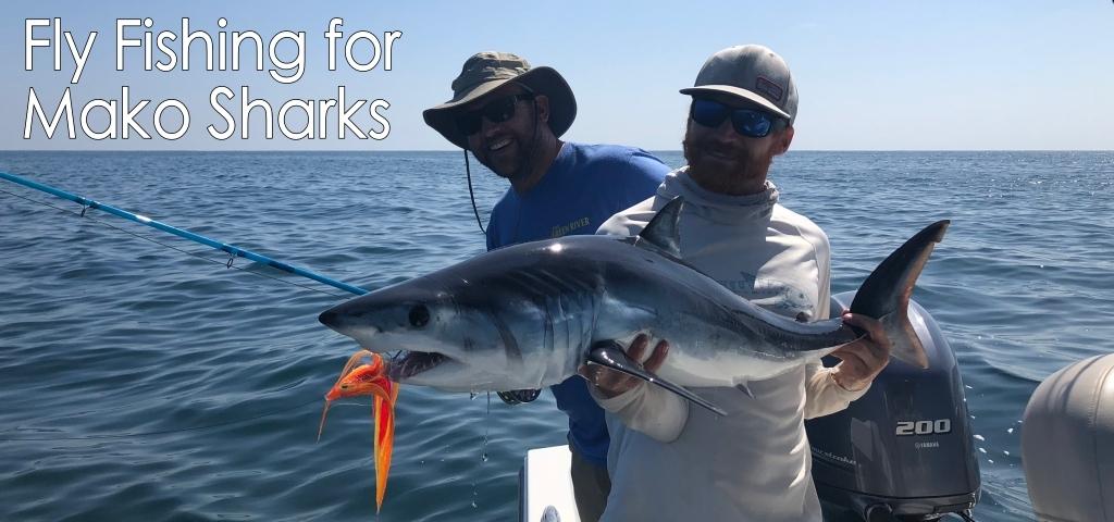 Mako Shark Fly Fishing