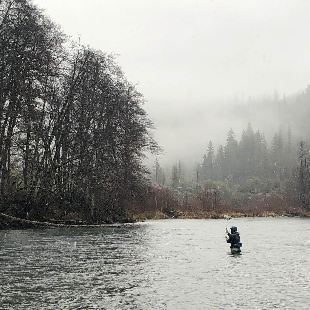 Northern California Fish Report