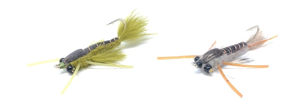 Damsel-Fly-Carp-Fishing