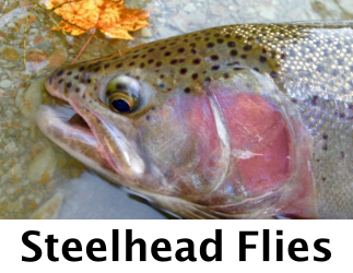 Steelhead Flies at TheFlyStop.com