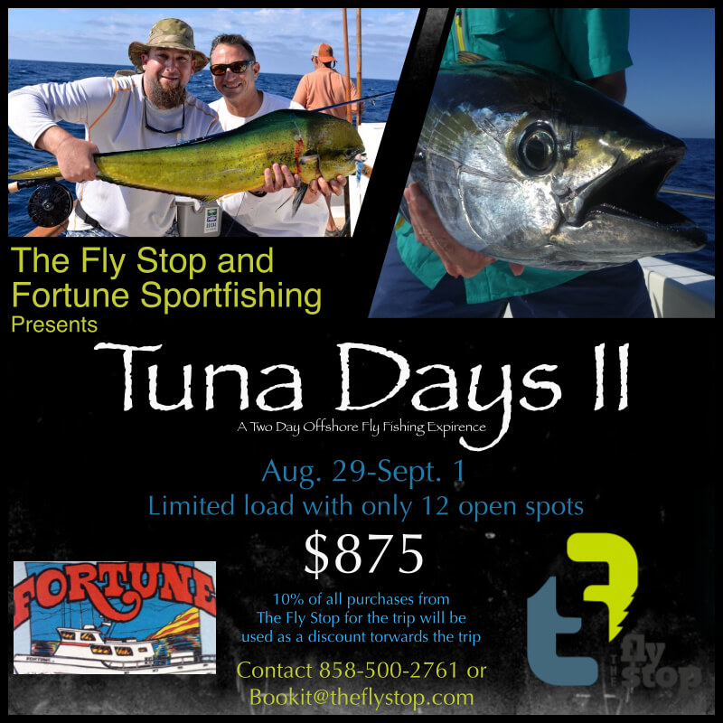 Tuna Fishing San Diego Charter