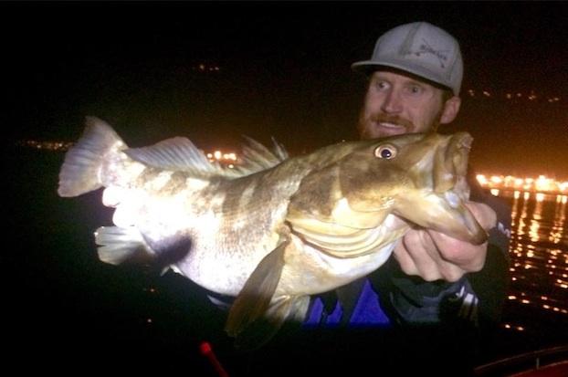 calico bass fly fishing