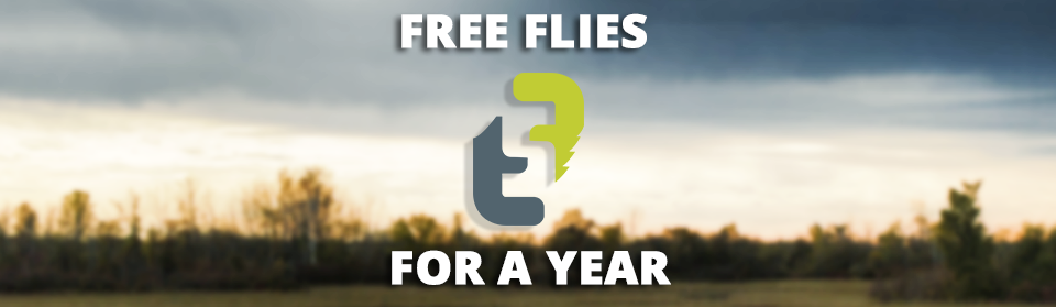 Free Flies for a year