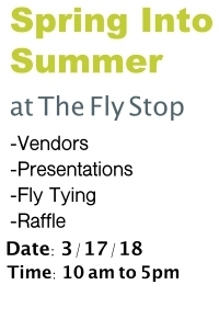 The-Fly-Stop-Spring-Into-Summer